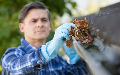 Home Maintenance: Cleaning the Gutters